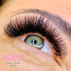 Original Volume Lashes